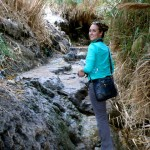 Ein Gedi Oasis Hike