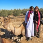 Camel trekking - Noam Farm