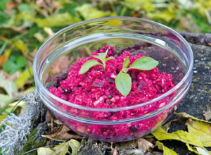Chef Marika's Quinoa Beet Salad and Upcoming Estonian Retreat
