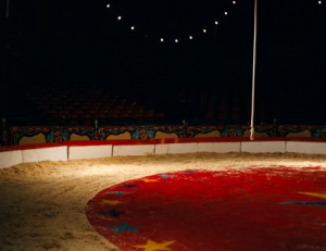 Circus Dogs: A History